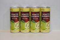 樂天 石榴汁 250ml x 30 罐