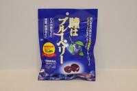 零食類 日本 藍莓糖 100 g X 1包
